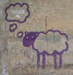 purple sheep