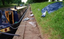York clean up